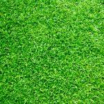 Gardena grasmaaier